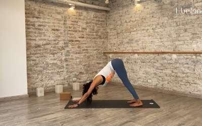 Introducción a Ashtanga Yoga